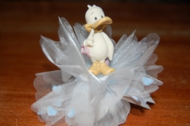 eend eendjes duck opgemaakt