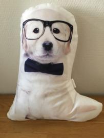 Kussen model hond met bril