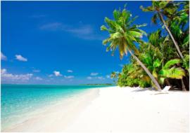 030  Tropisch Eiland Strand Palmbomen Vliesbehang  300x210 met gratis behanglijm