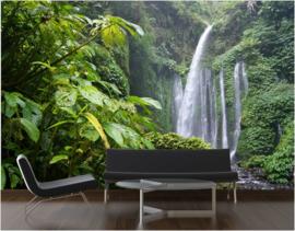 174 Jungle Regenwoud Watervallen 300x210  Fotobehang Actieprijs