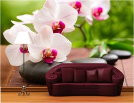 490 Orchideeën Roze Wellness 300x210 Fotobehang