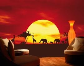 044 AFRICAN CARAVAN 400x280 Zon Rode met rode gloed fotobehang met lijm