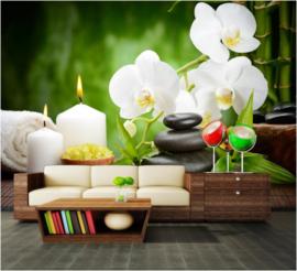 491 Orchideeën Spa Wellness 400X280 Actieprijs Fotobehang