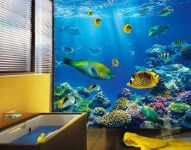 169 UNDERWATER WORLD 300x280 Zee Koraal Vissen fotobehang met lijm