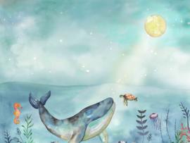 BN Wallcoverings Doodleedo Fotobehang 300441DX Ocean Friends/Schildpad/Zeepaard/Vissen/Walvis//Kinderkamer