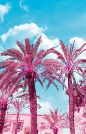 Noordwand Good Vibes Fotowand GVD24300 Mural Palm/Tropical/Palmbomen