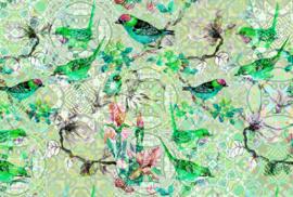 AS Creation Living Walls by Patel Fotobehang DD110247 Mosaic Birds1/Botanisch/Vogels Behang