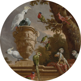 Painted Memories 2 Fotobehang Circle 8034C The Menagerie/Klassiek/Cirkel/Vogels/Dieren Dutch Wallcoverings