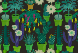 ASCreation Walls by Patel Fotobehang Cactus Garden 2 DD114147 Planten/Cactus/Modern/Botanisch