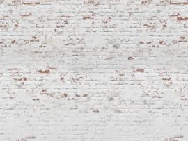 BN Studios/BN Wallcoverings Fotobehang Murals 200409 Bricks/Baksteen/Stenen/Landelijk/Modern