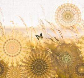 Behangexpresse Circle of Life/Select.D Fotobehang TD4156 Mellow/Mandala/Vlinders/Grasspriet