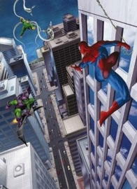 Behang. 4-433 Spiderman-Komar