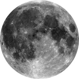Komar Home Imagine Edition 4 Fotobehang D1-019 Moon/Maan/Natuurlijk/Modern