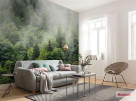 Komar Pure PSH061-VD4 Forest Land/Bomen/Landschap/Mist Fotobehang Noordwand