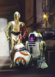 Noordwand/Komar Disney Edition4 Fotobehang 4-447 Star Wars Three Droids/Film Behang