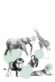 Esta XL Photowalls For Kids Fotobehang 158704 Animals/Dieren/Olifant/Stippen/Ballen/Kinderkamer Behang