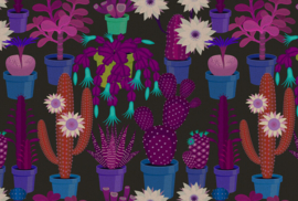 ASCreation Walls by Patel Fotobehang Cactus Garden 1 DD114142 Botanisch/Planten/Cactus/Modern