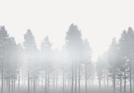 Noordwand Komar Raw Fotobehang RSX8-055 Silver Haze/Bomen/Botanisch/Natuurlijk