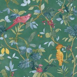 Noordwand #Hashtag Behang 11003 Botanisch/Tropical/Vogels/Papegaai/Kameleon/Hagedis/Dieren/Natuurlijk