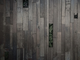 BN Studios/BN Wallcoverings Murals Fotobehang 200406 Wooden Wall/Planken/Hout/Botanisch/Varens