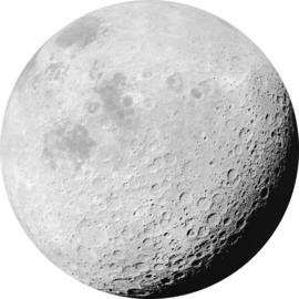 Komar Home Imagine Edition 4 Fotobehang D1-020 Luna/Maan/Natuurlijk