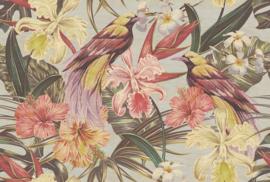 ASCreation Walls by Patel Fotobehang Exotic Birds 1 DD114412 Vogels/Botanisch/Natuurlijk