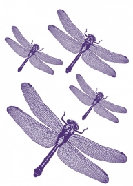 Sticker 17043 Libelle-Komar