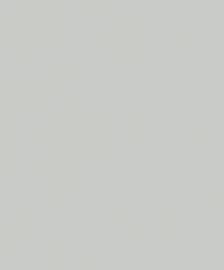 Noordwand New Spirit Behang 32748 Uni/Structuur/Natuurlijk/Landelijk
