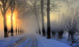 We Live by Light/Holland Winterochtend 0007  Fotobehang - Noordwand