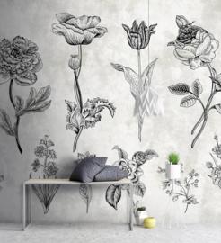 Walls by Patel DD110356 Sketchpad 2 Botanisch Fotobehang - ASCreation