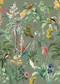 Behangexpresse Floral-Utopia Fotobehang INK7557 Tropical Winter/Grafisch/Papegaai/Vogels/Tropisch