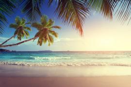 AS Creation Wallpaper 3 XXL Fotobehang 471696 Seychelles/Strand/Palmboom