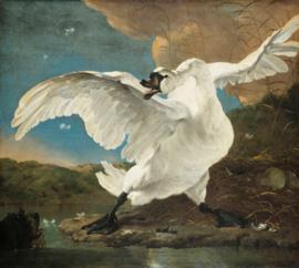 Painted Memories 2 Fotobehang 8039 The Endangared Swan/Zwaan/Dieren/Klassiek Dutch Wallcoverings