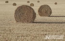 Noordwand Farm Live Fotobehang. 3750006  Hooi/Landelijk/Gras/Strobalen Behang