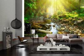AS Creation Wallpaper XXL3  Fotobehang 470624XL River/Natuur