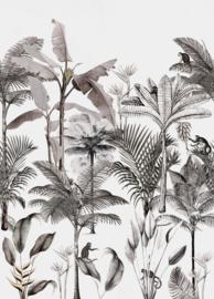 Onszelf Botanique Fotobehang 539189 Palm/Tropisch/Apen/Natuurlijk Behang Rasch