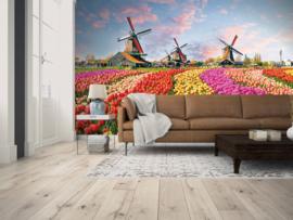 AS Creation Designwalls Fotobehang DD118694 Zaanse Schans/Nederland/Bloemen/Molens/Tarvelling