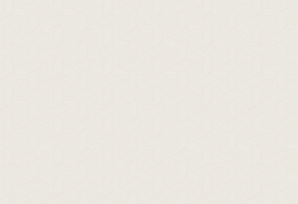 Hookedonwalls Sketch Behang 19555 Limit/Modern/Grafisch/Lijnen/Beige