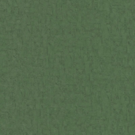 BN Wallcoverings van Gogh 2 Behang 220079 Uni/Structuur/Landelijk/Natuurlijk/Groen
