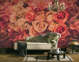AS Creation Designwalls Fotobehang DD118524 Flower Wall/Roses/Rozen/Romantisch/Botanical Behang