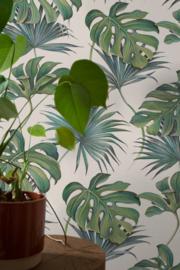 Noordwand New Spirit Behang 32745 Botanisch/Bladeren/Monstera