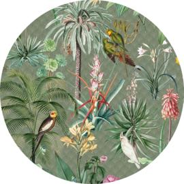 Behangexpresse Floral-Utopia Cirkel Tropical Winter INK317 Tropisch/Bloemen/Vogels