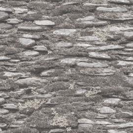Noordwand Evergreen Behang 7337 Steen/Mos/Natuurlijk/Landelijk/Grijs