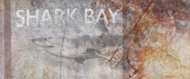 AS Creation AP Digital4 Behang DD108946 Shark Bay/Vissen/Haai/Vintage Fotobehang