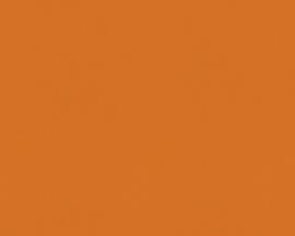 Oranje 2957-29 Behang Outlet - ASCreation