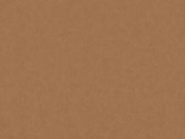 BN Wallcoverings Grand Safari Behang  220505 Leather /Uni/Leer Structuur/Dieren Huiden/Natuurlijk/Modern