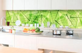 Dimex Zelfklevende keuken Achterwand Leaf Veins KL-350-048 Bladeren/Modern/Bladnerf/Natuurlijk