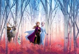 Noordwand/Komar Disney Edition4 Fotobehang 8-4102 Frozen Friends/Elsa/Anna/Kristoff/Sven Eland Behang