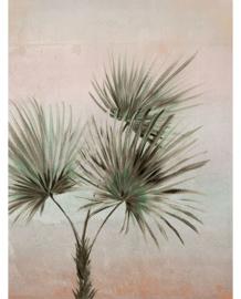 Eijffinger Terra Fotobehang 391564 Palm Ombre/Natuurlijk/Botanisch/Palmboom