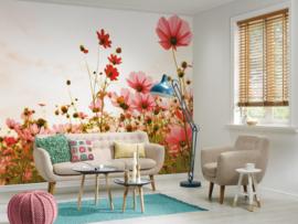 AS Creation Designwalls Fotobehang DD118598 Flower Meadow 1/Klaproos/Nature/Bloemen/Natuurlijk